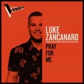 Pray For Me (The Voice Australia 2019 Performance / Live) by Luke Zancanaro