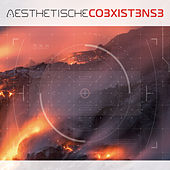 Co3xist3ns3 by Aesthetische