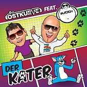 Der Kater von DJ Ostkurve