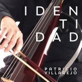 Identidad de Patricio Villarejo