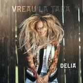 Vreau La Tara by Delia