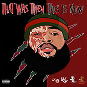 That Was Then This Is Now by Freddy Myers