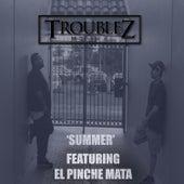 Summer (feat. El Pinche Mata) by Troublez