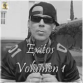 Éxitos, Vol. 1 de Sonik 420