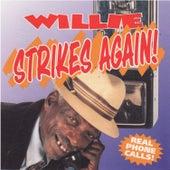 Willie Strikes Again! by Willie P. Richardson