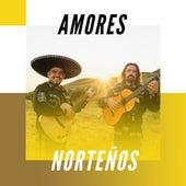 Amores Norteños de Various Artists
