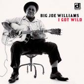 I Got Wild de Big Joe Williams