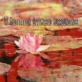 47 Meditation Optimised Surroundings von Entspannungsmusik