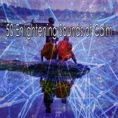 50 Enlightening Sounds of Calm de Meditación Música Ambiente