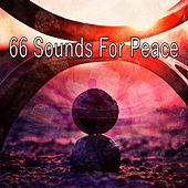 66 Sounds for Peace by Classical Study Music (1)