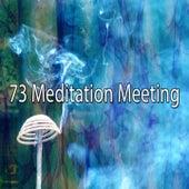 73 Meditation Meeting von Massage Therapy Music