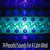 74 Peaceful Sounds for a Calm Mind von Massage Therapy Music