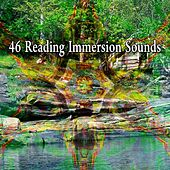 46 Reading Immersion Sounds von Lullabies for Deep Meditation
