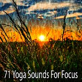 71 Yoga Sounds for Focus von Music For Meditation