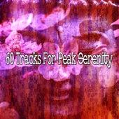60 Tracks for Peak Serenity de Study Concentration