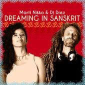 Dreaming in Sanskrit by Marti Nikko