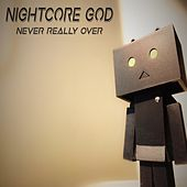 Never Really Over de Nightcore God