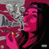 Nota Loca (Remix) by Eklectico