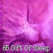 65 Gift of Sleep de Dormir