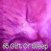 65 Gift of Sleep de Dormir