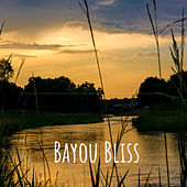 Bayou Bliss by Various Artists