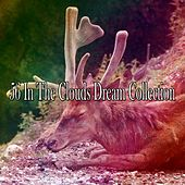 56 In the Clouds Dream Collection by Nature Sounds Nature Music (1)