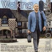 Walking by Edilio Bermudez