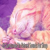 63 Surrounded in Natural Sounds for Sleep by Ocean Sounds Collection (1)