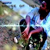 House of 101 de EmDeep101