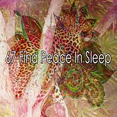 67 Find Peace in Sleep von Rockabye Lullaby