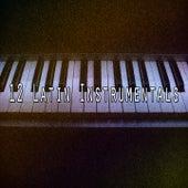 12 Latin Instrumentals von Chillout Lounge