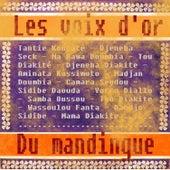Les Voix d'or du Mandingue by Various Artists