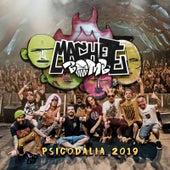 Psicodália 2019 (Ao Vivo) de Machete Bomb