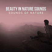 Beauty in Nature Sounds by Sounds Of Nature