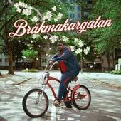 Bråkmakargatan by Ozzy