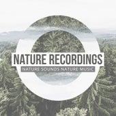 Greatest Nature Recordings de Nature Sounds Nature Music (1)