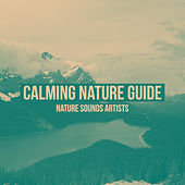 Calming Nature Guide de Nature Sounds Artists