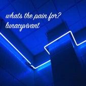 Whats the Pain for? de Lunacyvivant