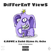 Different Views by Crowe