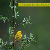 30 Relaxing Nature Sounds von Meditation Spa