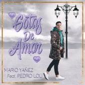 Gotas de Amor de Mario Yañez