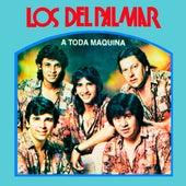 A Toda Máquina by Los Del Palmar