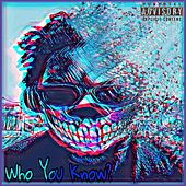 Who You Know? von Static