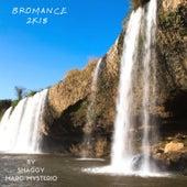 Bromance (2k18 Remix) von Shaggy