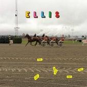 Hverdag og Fest by Ellis