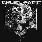 Smash, Kill and Erase de Cruel Face