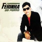 Ferinha do Forró, Vol. 8 by Ferinha do Forró