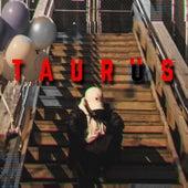 Taurus von Menny