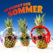 So klingt der Sommer von Various Artists