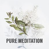 Pure Meditation : Relaxing Music, Soft Piano, Calm, Harmony, Soul Healing, Bliss, Spirituality, Inspiration von Various Artists